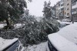 Снежное воскресенье в Кемерово